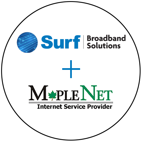 Surf + MapleNet_v4